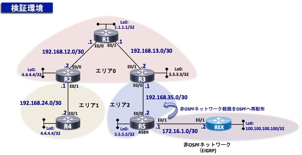 LSA検証ネットワーク