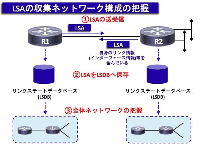 OSPF-LSA